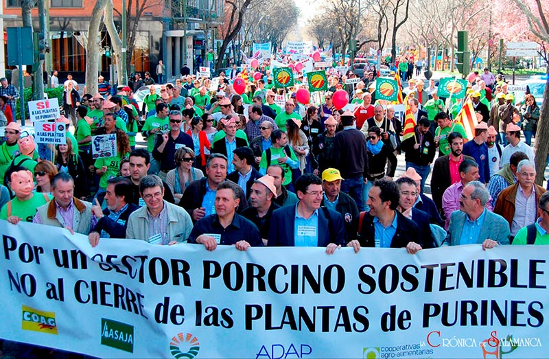 sector porcino protesta