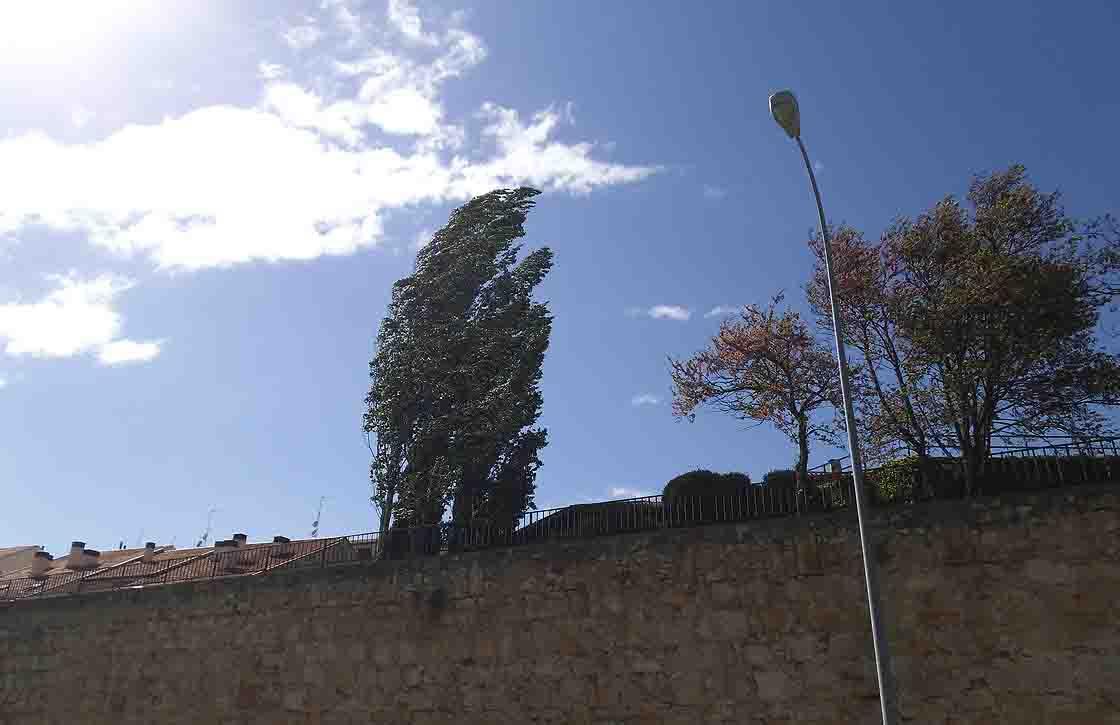 temporal viento fuerte