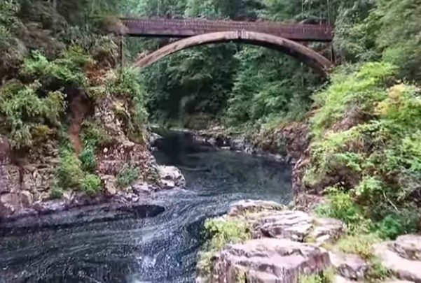 Lanzan adolescente desde puente