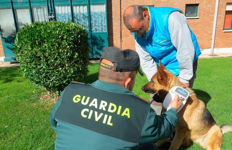 guardia civil campaña control perros