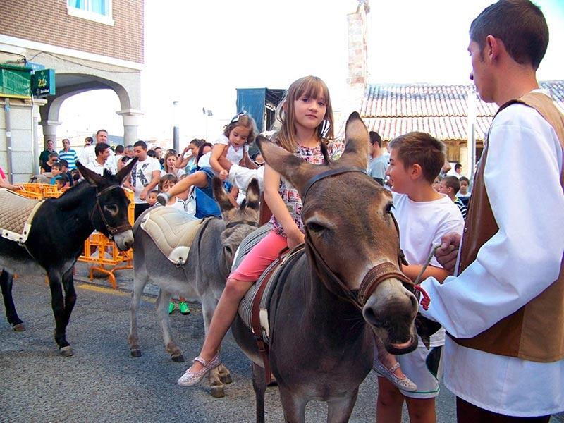 carbajosa fiestas paseo burros