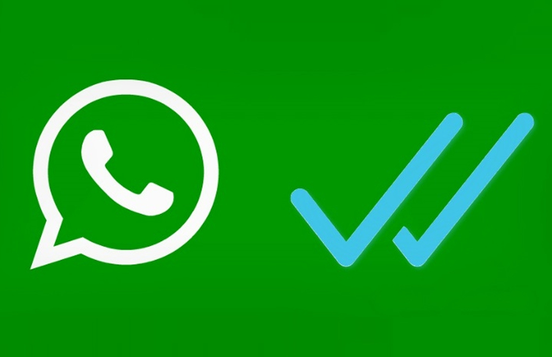 El logo del whatsapp y el doble check azul.