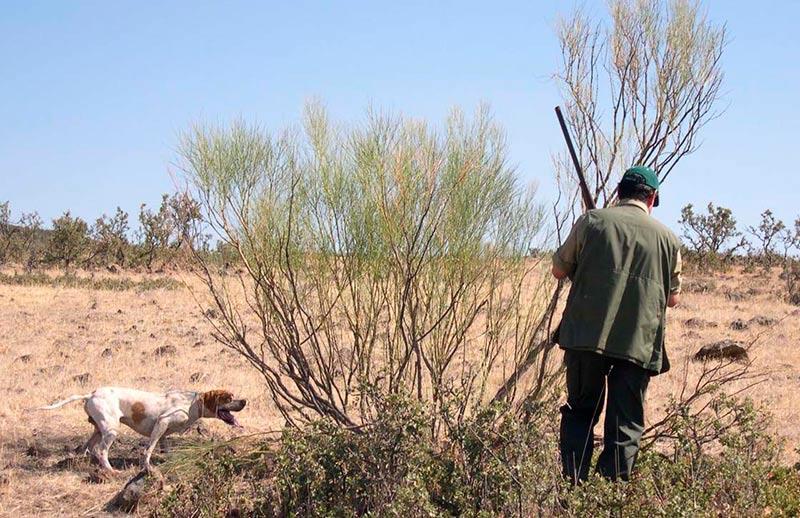 Un cazador con su perro.
