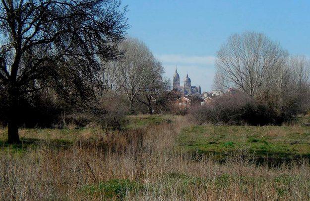 isla El Soto, Salamanca