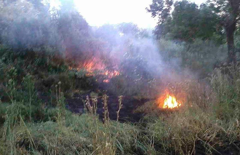 incendio isla del soto 1