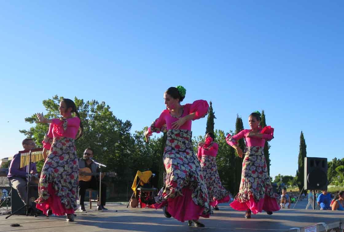 La agrupación flamenca, en plena actuación.