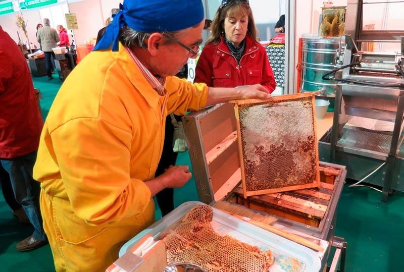 Dimas Canete ofrece una exhibición de corte de la miel.