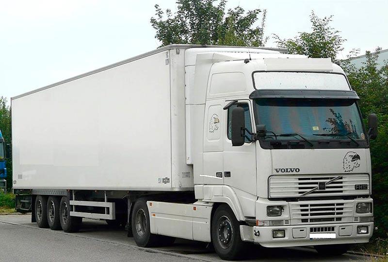 trafico camion conductor sin carne puntos