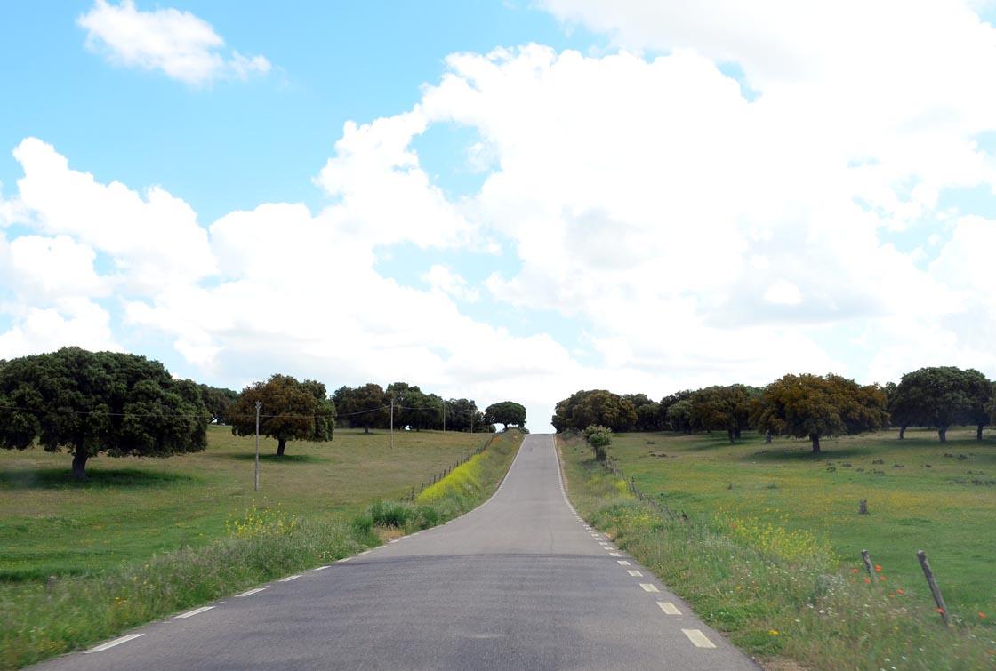 carretera diputacion junto veguillas 3