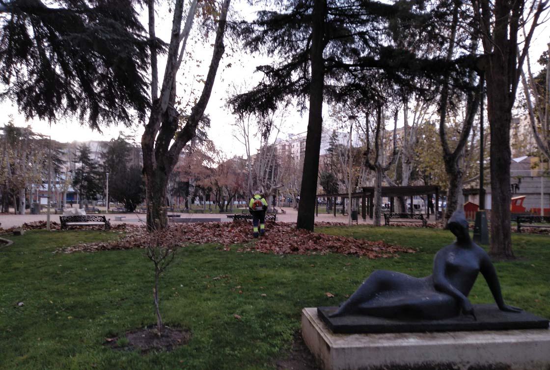 parque alamedilla hojas otoño limpieza