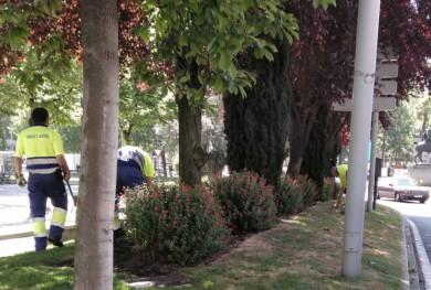 eulen parques y jardines