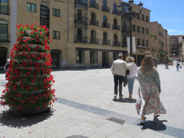jardineras, jardineras con flores (1)