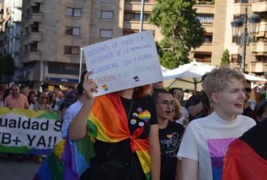 marcha manifestacion orgullo gay lgtbi (3)