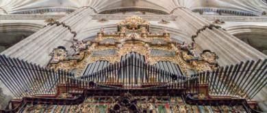 organo catedral (1 de 1)-2