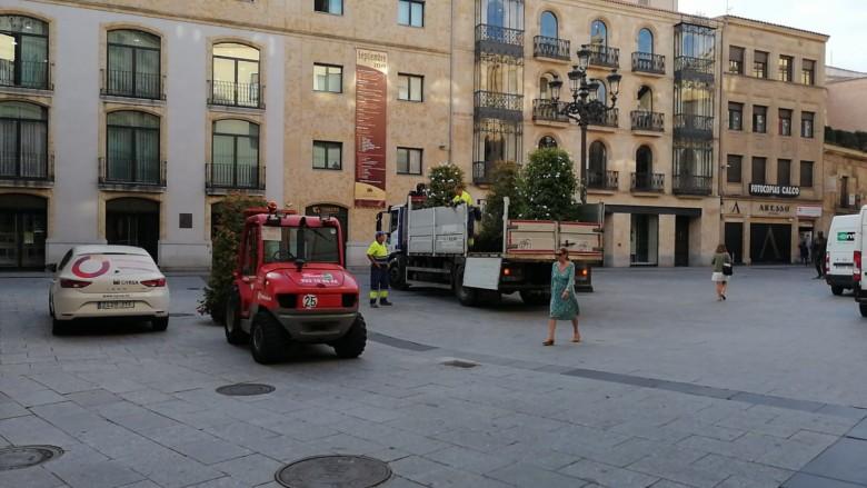 Quitan las jardineras de las calles Toro y Zamora. Salamanca