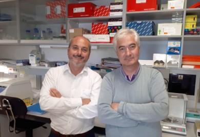 cancer mama doctores Pandiella y Ocaña