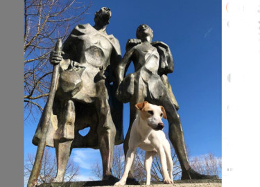 Pipper, el perro que triunfa en Instagram. Foto. Instagram.