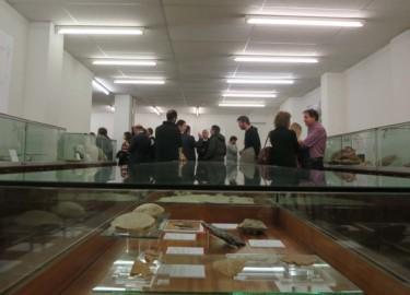 La colección paleontológica de la Sala de las Tortugas en la Facultad de Ciencias renueva sus contenidos y el espacio expositivo