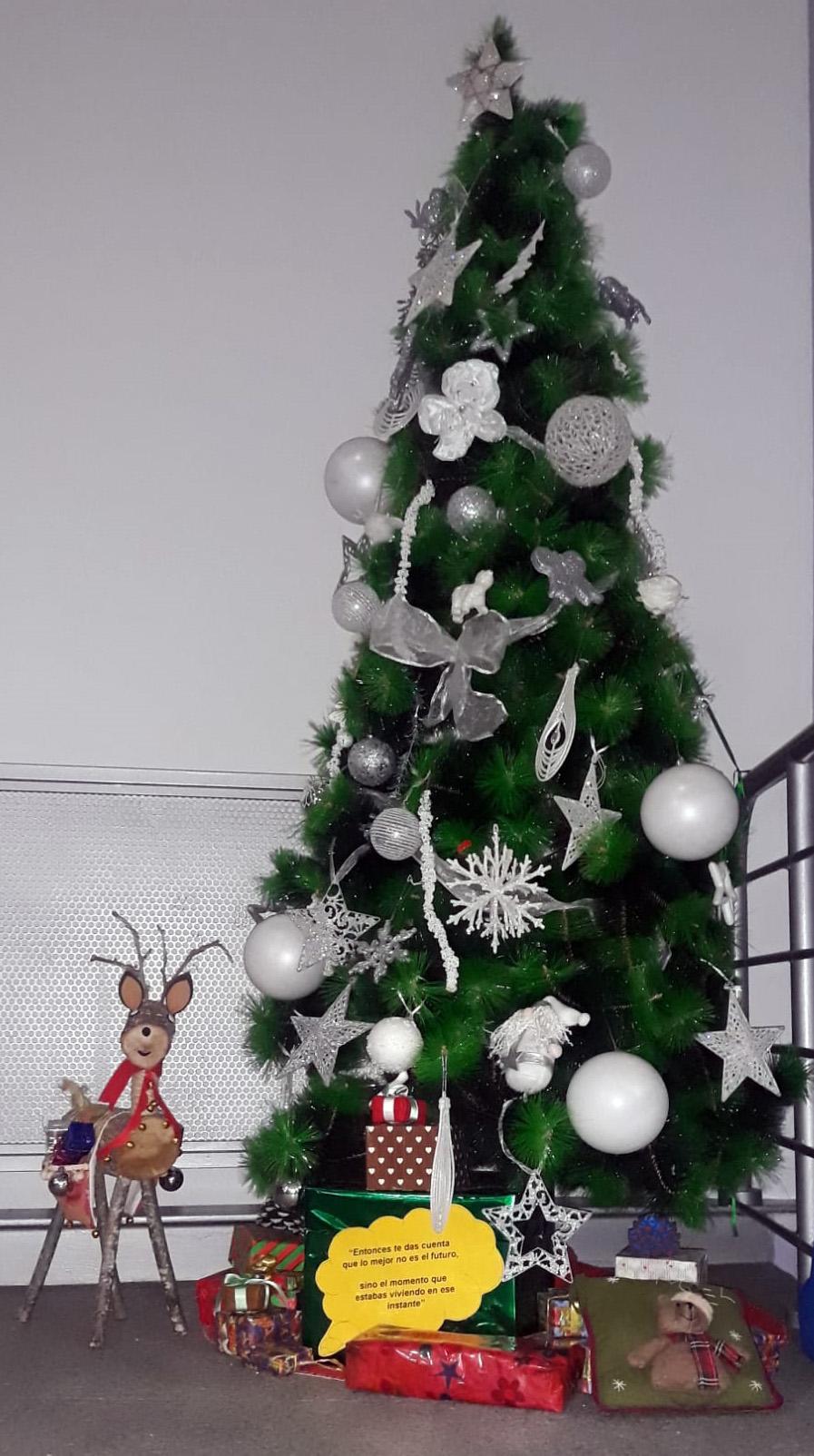 Reno y árbol de A.F.A. (Salamanca).