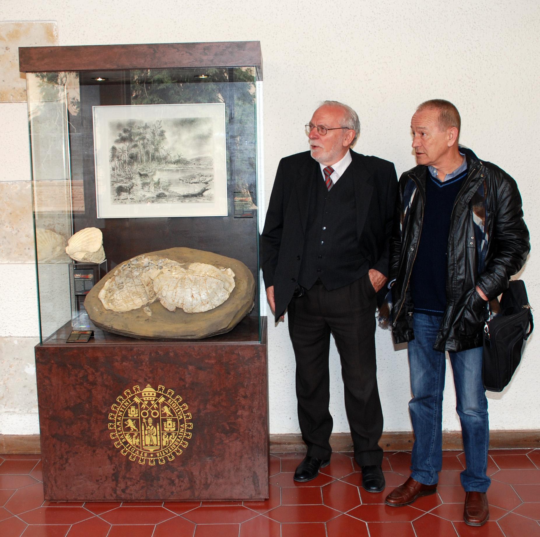 """Desde el 15 de marzo de 2012 el cuadro """"Aurora de los Tiempos Modernos"""" está colocado en la vitrina de Paleontología del Claustro Alto de la Universidad de Salamanca."""