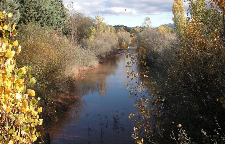 Cauce del río Tenebrilla a su paso por Tenebrón.