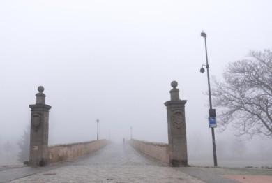 Niebla. ICAL. David Arranz
