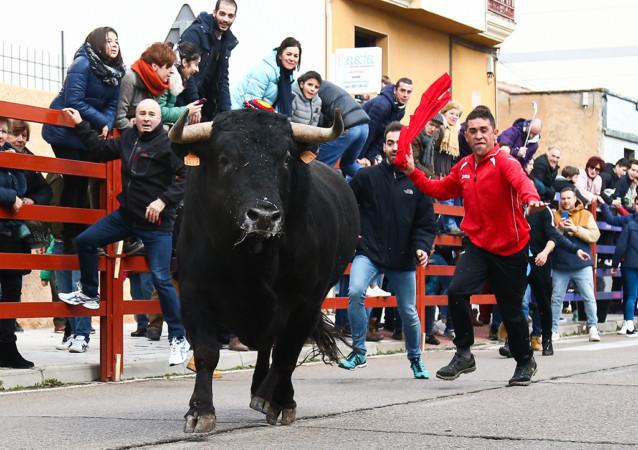 José Vicente / ICAL Acto organizado con motivo de la festividad de San Sebastián patrono de Ciudad Rodrigo