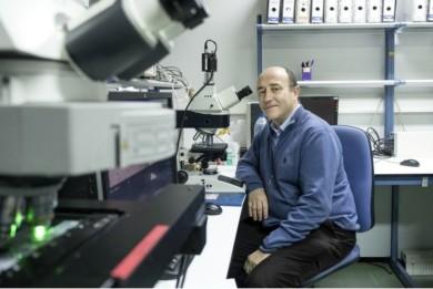cancer leucemia ibsal hernandez rivas