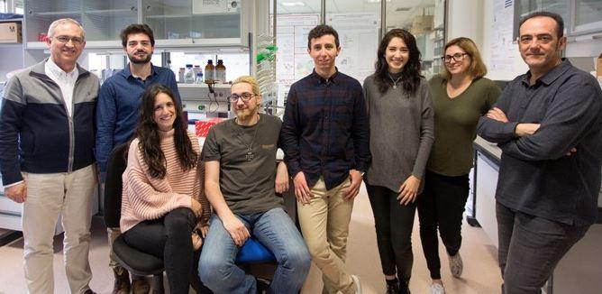 cientificos centro cancer genes envejecimiento