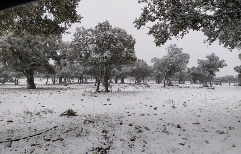 ICAL. Nieve en la provincia de Salamanca