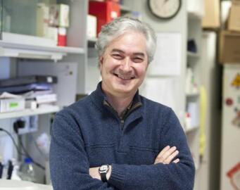 Atanasio Pandiella, investigador del Centro de Investigación del Cáncer.