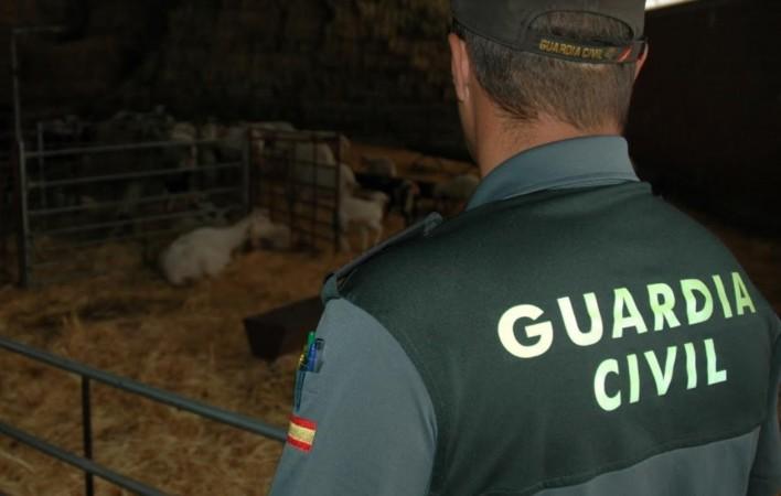 guardia civil archivo corderos