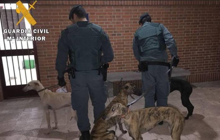 guardia civil confinamiento perros