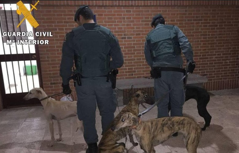 guardia civil confinamiento perros