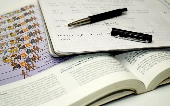 La web Carrerafacil.com comparte apuntes y consejos para aprobar exámenes.