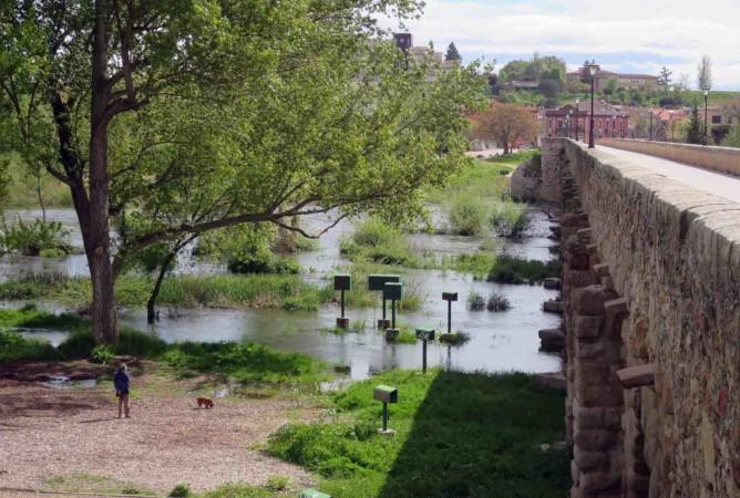 rio tormes desbordado lunes aguas coronavirus puente romano (2)