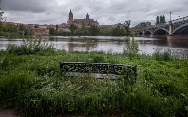 La naturaleza engulle a los bancos en Salamanca.
