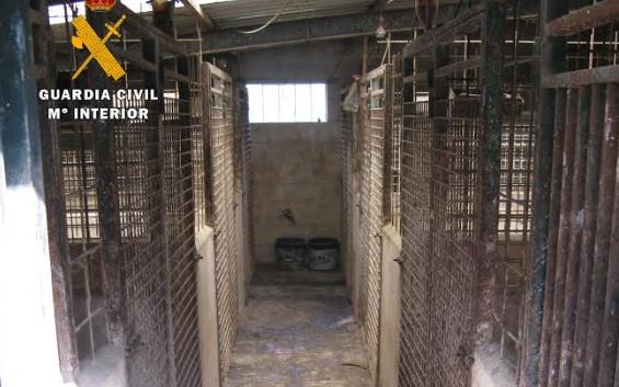 instalaciones rehala linares veterinario