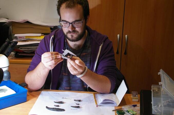 Álvaro Simarro estudiando dientes en Museo Dinosaurios (2)