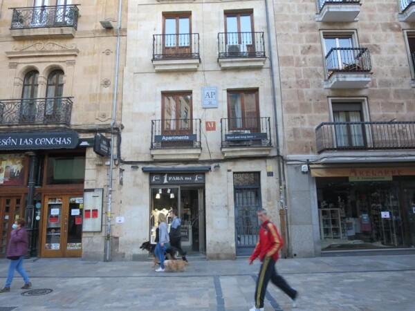 pisos apartamentos turisticos (1)