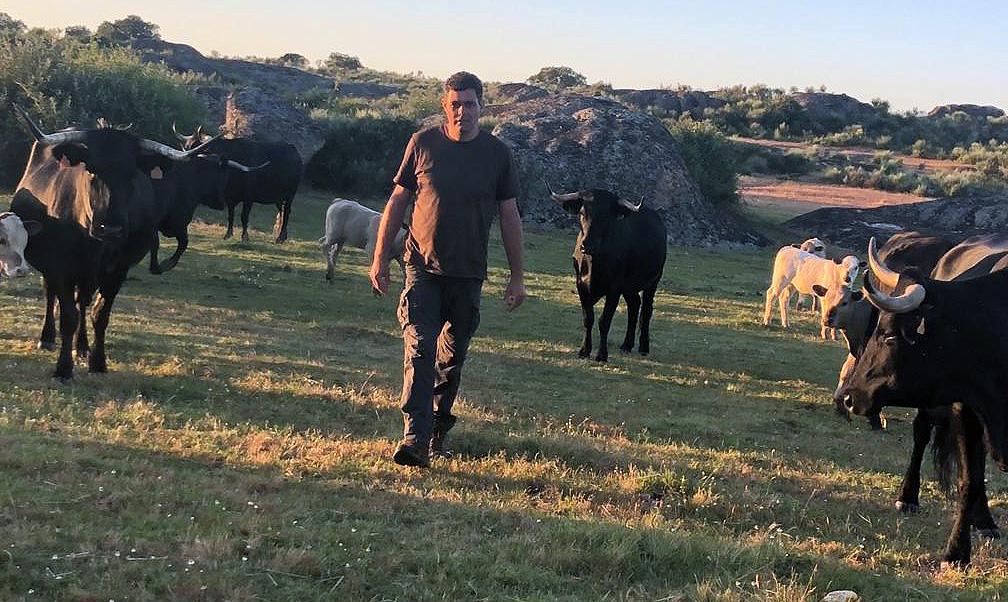 Luis Ángel Cabezas, agricultor y ganadero salmantino, de San Felices de los Gallegos.