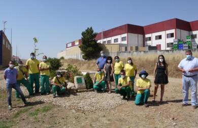 carbajosa curso entorno verde