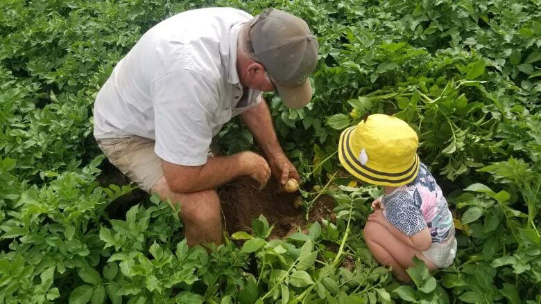 Un agricultor enseña una patata a un niño. Foto. Pixabay.