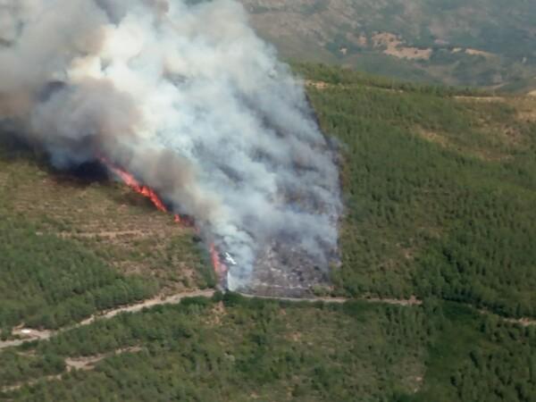 Incendio forestal en Valdelageve (1)