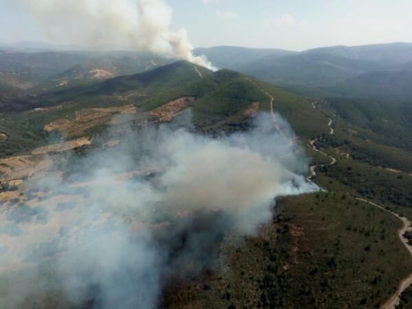 Incendio forestal en Valdelageve (2)
