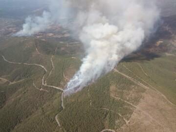 Incendio forestal en Valdelageve (3)