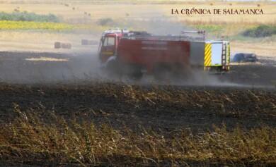 incendio topas bomberos diputacion (1)