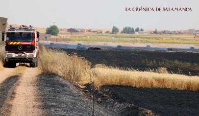 incendio topas bomberos diputacion (5)