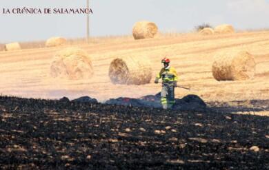incendio topas bomberos diputacion (7)