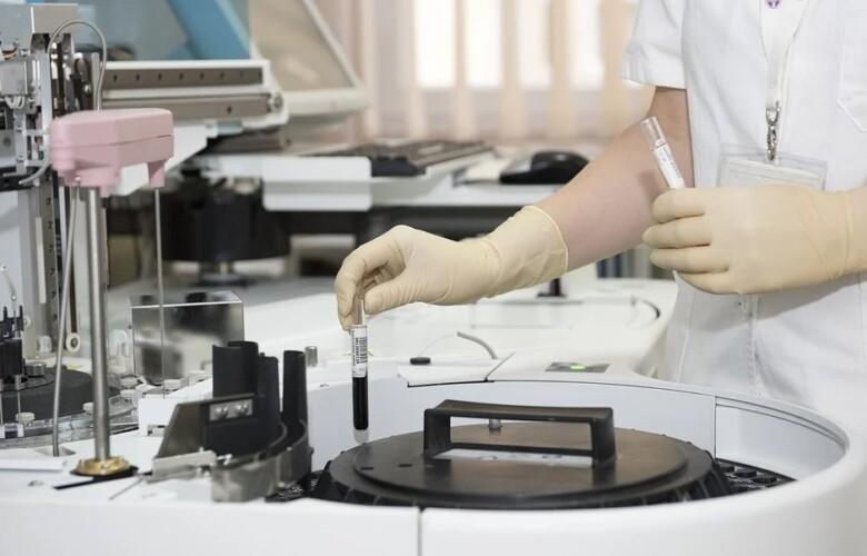 investigacion laboratorio celulas madre